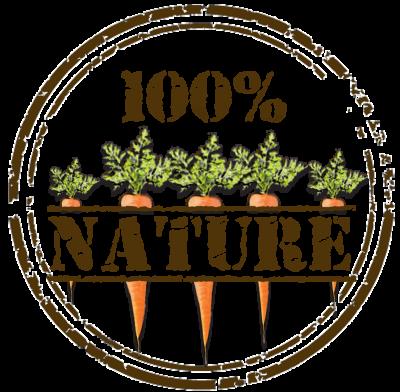 Logo 100 nature